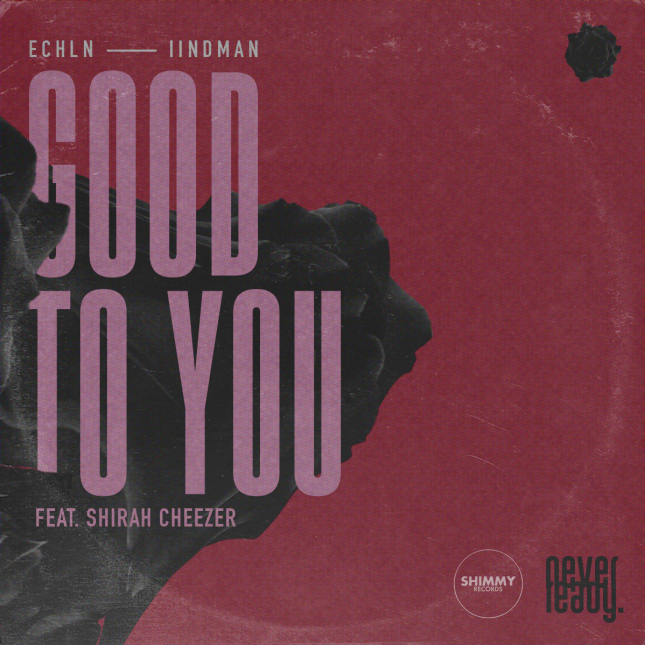 ECHLN & IIndman - Good To You (Cover) 6